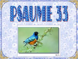 PSAUME 33