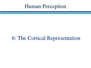 6: The Cortical Representation