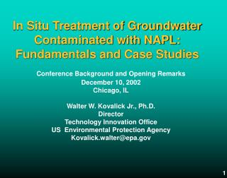 In Situ Treatment of Groundwater Contaminated with NAPL: Fundamentals and Case Studies