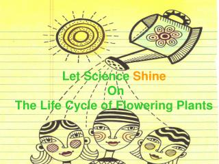 Let Science  Shine  On  The Life Cycle of Flowering Plants