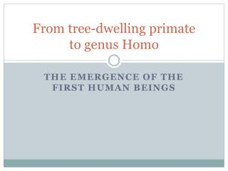 From tree-dwelling primate to genus Homo