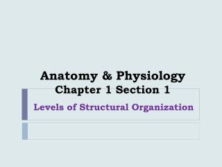 Anatomy & Physiology Chapter 1 Section 1