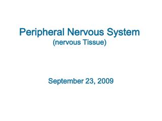 Peripheral Nervous System (nervous Tissue)