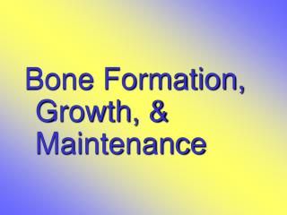 Bone Formation, Growth, & Maintenance