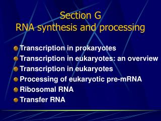 Section G RNA synthesis and processing