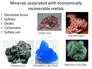 Minerals associated with economically recoverable metals