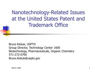 Nanotechnology-Related Issues at the United States Patent and Trademark Office