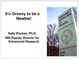 It's Groovy to be a Newbie! Sally Rockey, Ph.D. NIH Deputy Director for Extramural Research