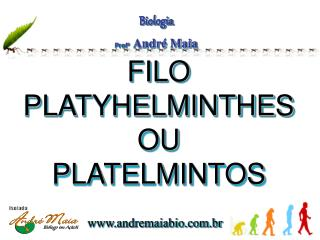 FILO  PLATYHELMINTHES OU PLATELMINTOS