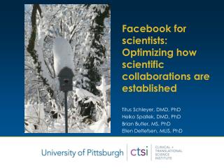 Facebook for scientists:  Optimizing how scientific collaborations are established