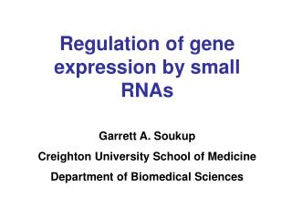 Regulation of gene expression by small RNAs Garrett A. Soukup