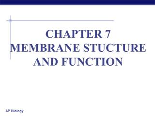 CHAPTER 7  MEMBRANE STUCTURE AND FUNCTION
