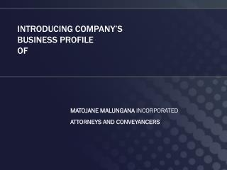 INTRODUCING  COMPANY'S  BUSINESS PROFILE OF