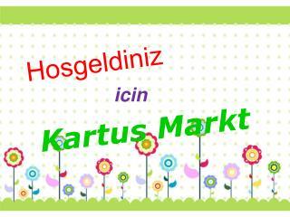 Kartus Markt tarafından Kartuşları Tipi