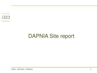 DAPNIA Site report