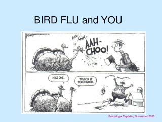 BIRD FLU and YOU