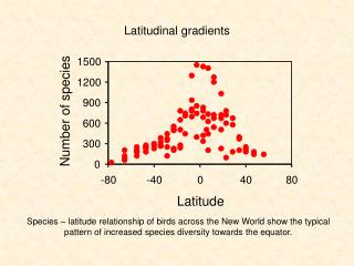 Latitudinal gradients