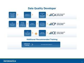 Data Quality Developer