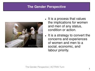 The Gender Perspective