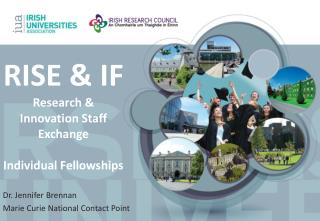 RISE & IF Research & Innovation Staff Exchange Individual Fellowships