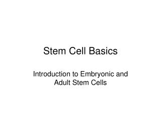 Stem Cell Basics