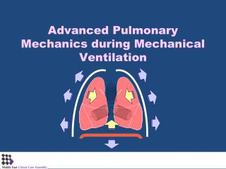 Advanced Pulmonary Mechanics during Mechanical Ventilation