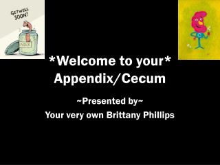 *Welcome to your* Appendix/Cecum