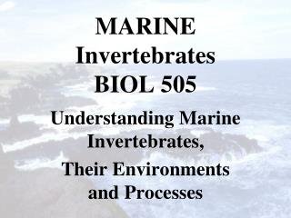 MARINE Invertebrates BIOL 505