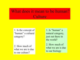 What does it mean to be human? Culture