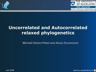 Uncorrelated and Autocorrelated relaxed phylogenetics