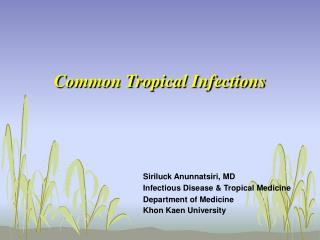 Common Tropical Infections