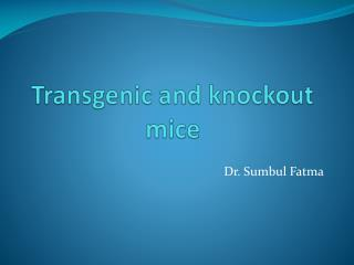 Transgenic and knockout mice