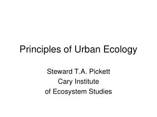Principles of Urban Ecology