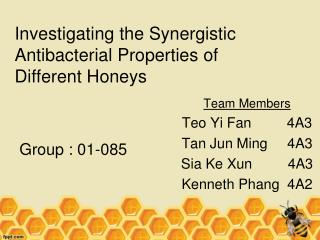 Investigating the Synergistic Antibacterial Properties of Different Honeys