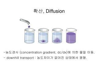확산 , Diffusion