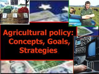 Agricultural policy :  Concepts, Goals, Strategies