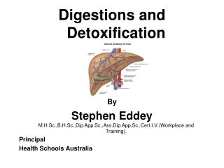 Digestions and  Detoxification By