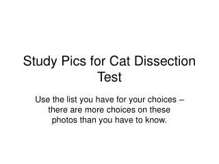 Study Pics for Cat Dissection Test