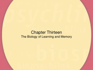 Chapter Thirteen The Biology of Learning and Memory