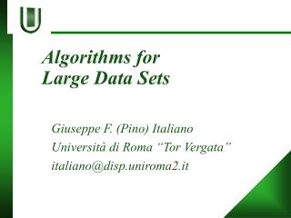 Algorithms for  Large Data Sets