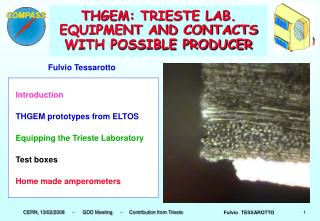 THGEM: TRIESTE LAB. EQUIPMENT AND CONTACTS WITH POSSIBLE PRODUCER