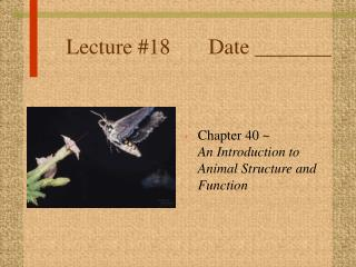 Lecture #18		Date _______