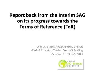Report back from the Interim SAG on its progress towards the  Terms  of Reference ( ToR )