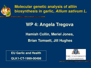 Molecular genetic analysis of alliin biosynthesis in garlic,  Allium sativum L.