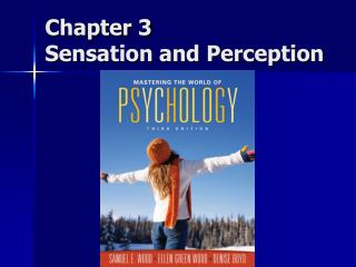 Chapter 3 Sensation and Perception