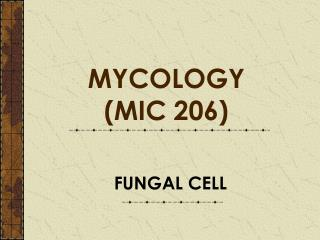 FUNGAL CELL
