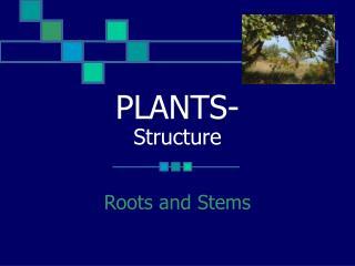 PLANTS- Structure