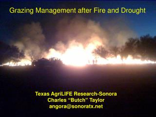 Grazing Management after Fire and Drought