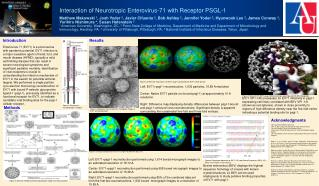 Interaction of Neurotropic Enterovirus-71 with Receptor PSGL-1