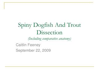 Spiny Dogfish And Trout Dissection (Including comparative anatomy)